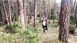 Waldbaden Baum Stärke Bäume