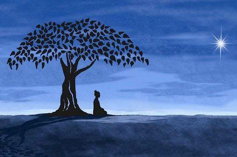 Yogi unter Bodhibaum